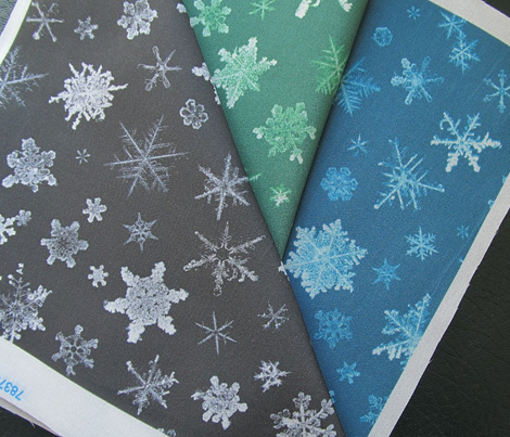 photographic snowflakes on charcoal