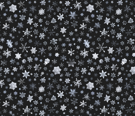 photographic snowflakes on charcoal fabric by weavingmajor on Spoonflower - custom fabric