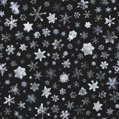 Snowflakes5grey_shop_thumb