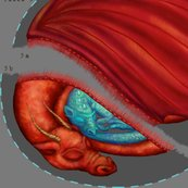 Rrdragon_warming_pillow_shop_thumb