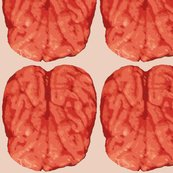 Monkey_brains_shop_thumb