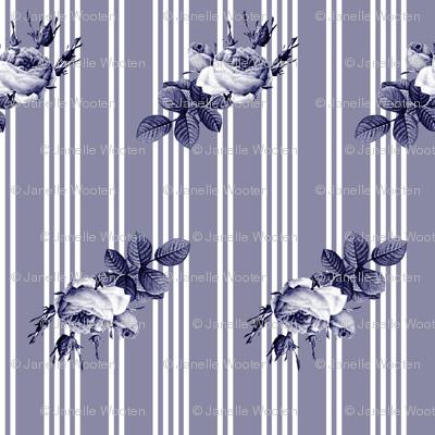 Pioneer Stripe