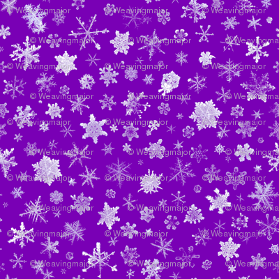 photographic snowflakes on royal purple