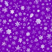 Rsnowflakes5purple_shop_thumb