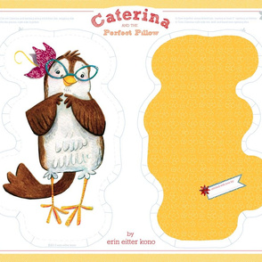 Caterina Pillow Craft