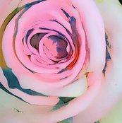 Rr1828772_rrrrrrrrrspoonflower_colored_pink_rose_jpg_shop_thumb