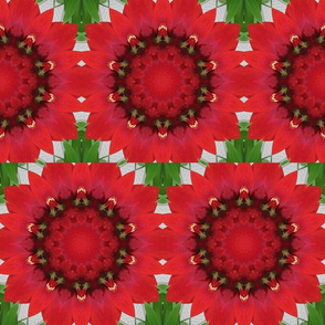Kaleidoscope Kraz