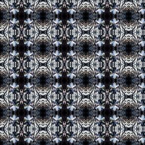 201302stormbacascrystal