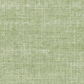 mesh in green