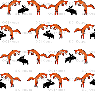 Foxes on Rabbits