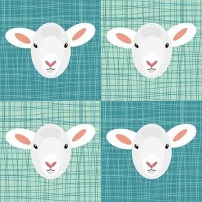 Aqua Lamb