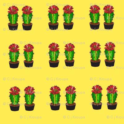 Cactus Flower (Yellow)