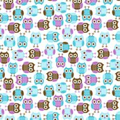 Jb_sasparilla_owls_1_shop_thumb