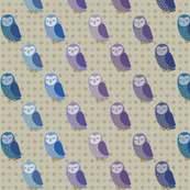 I  owls