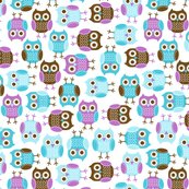 Jb_sasparilla_owls_large1_shop_thumb