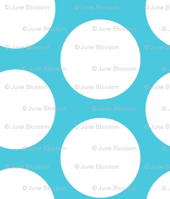 jb_sasparilla_circles_1