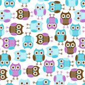jb_sasparilla_owls_x-lrg