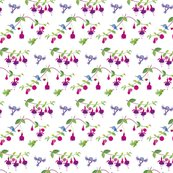 Rhummingbirds-pattern-fuchsia-rgb_shop_thumb