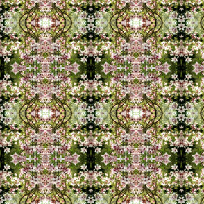 Magnolia Dreams_6537
