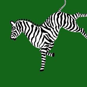 zebra_hi5_lt_green