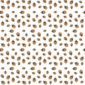 Rspoonflower_acorns_white_shop_thumb