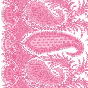 The Paisley Sublime ~ Anna Pink Border Print