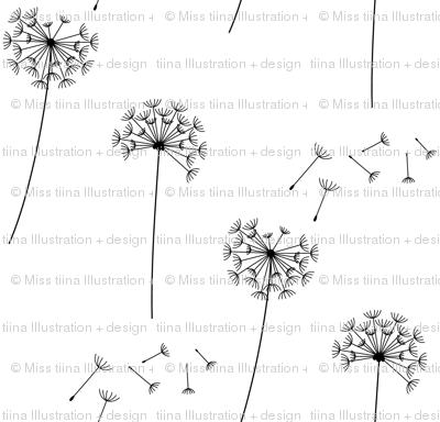 black + white blowing dandelions