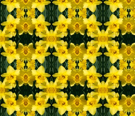 Rdaffodils_1832_8x8_shop_preview