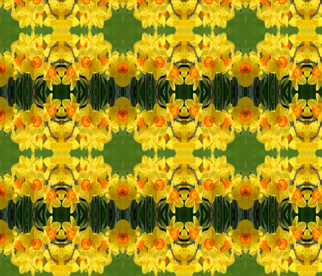 Daffodils_6373 fabric by falcon11 on Spoonflower - custom fabric