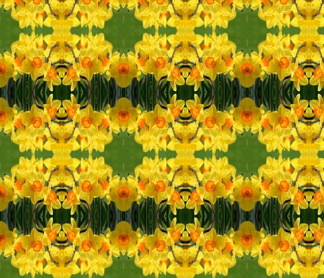 Daffodils_6373 fabric by falcon11 on Spoonflower - custom fabric