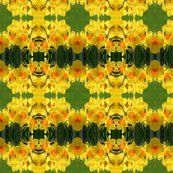 Rdaffodils_6373rt__2_8x8_shop_thumb