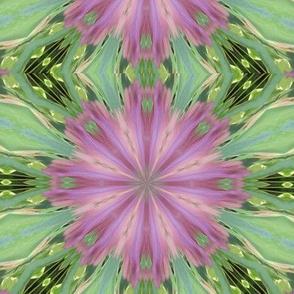 Kaleidescope 0929 v2