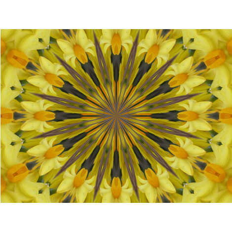 Kaleidescope 0852 Daffodils fabric by wyspyr on Spoonflower - custom fabric