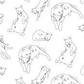 Cats_shop_thumb