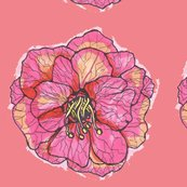Flowerwithcoral_shop_thumb