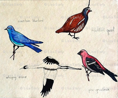 Four Rocky Mountain Birds