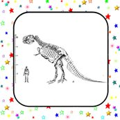 Quilt_block_stars_t_rex_skeleton_shop_thumb