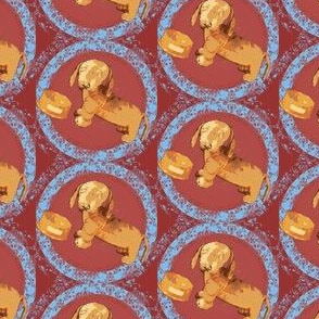 Oscar Winnie Dog