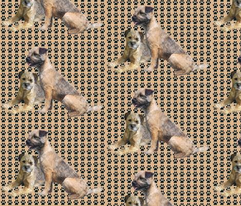 Border Terriers and Pawprints fabric by dogdaze_ on Spoonflower - custom fabric