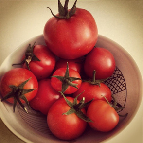 Tomatoes in a bowl instagram