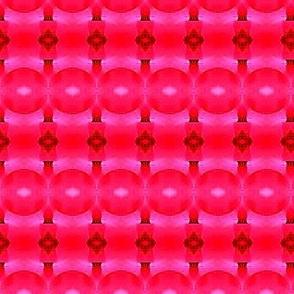 pink circles1