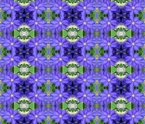 DSC02123 fabric by lindareeree on Spoonflower - custom fabric