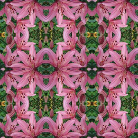 DSC02481 fabric by lindareeree on Spoonflower - custom fabric