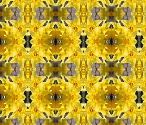 Rdaffodils_5673_8x8_shop_preview
