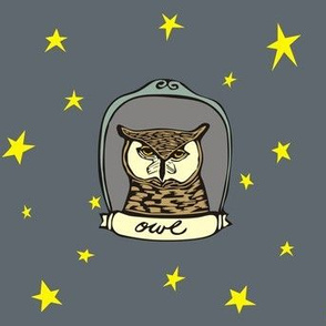 Framed Owl and Stars