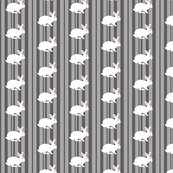 Rwhite_rabbit_on_grey_stripe