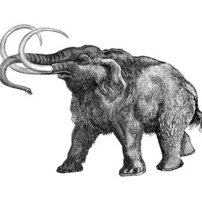 The Whole Yard Mammoth Side B
