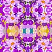 Rrimg_7917_-_version_3_shop_thumb