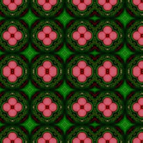 pink flowers and green