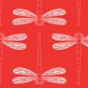 Rdragonfly_in_poppy_red_shop_thumb